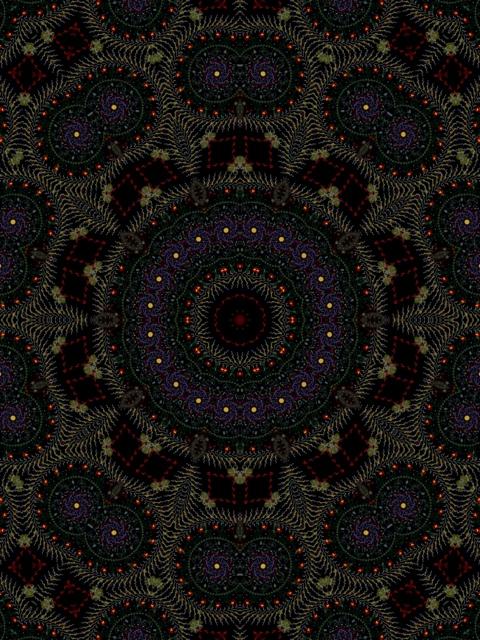 20111119-000501.jpg