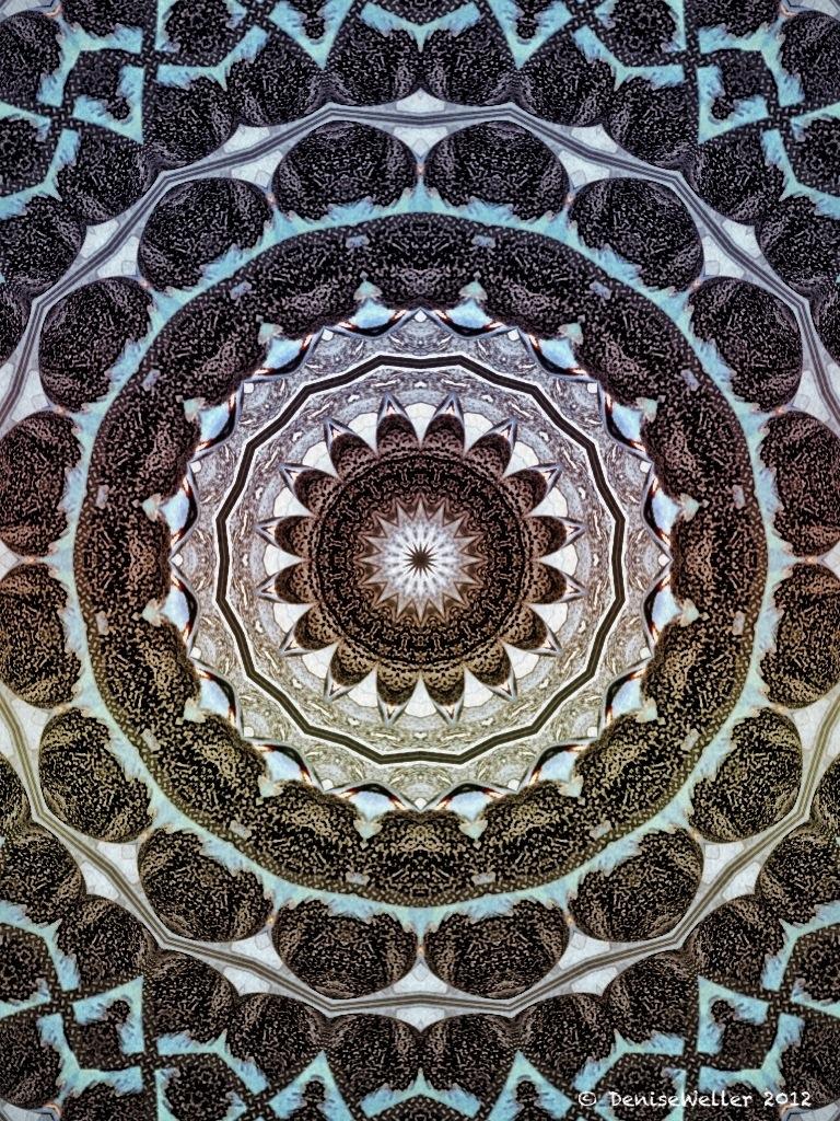 20120115-204727.jpg