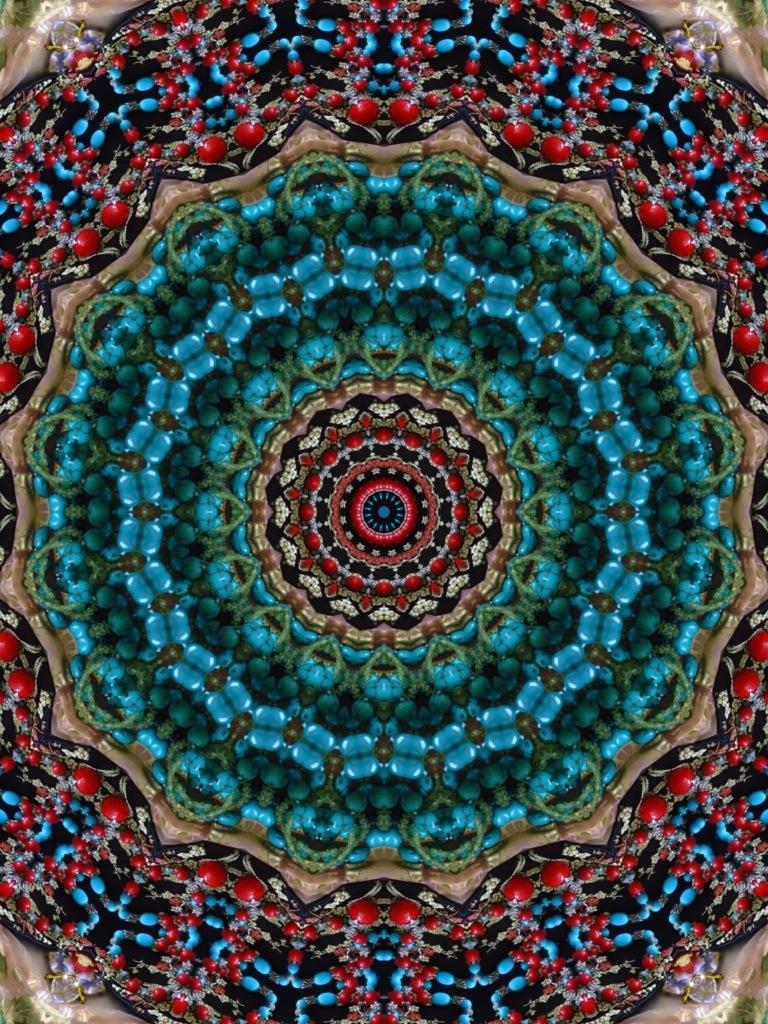 20120129-022056.jpg
