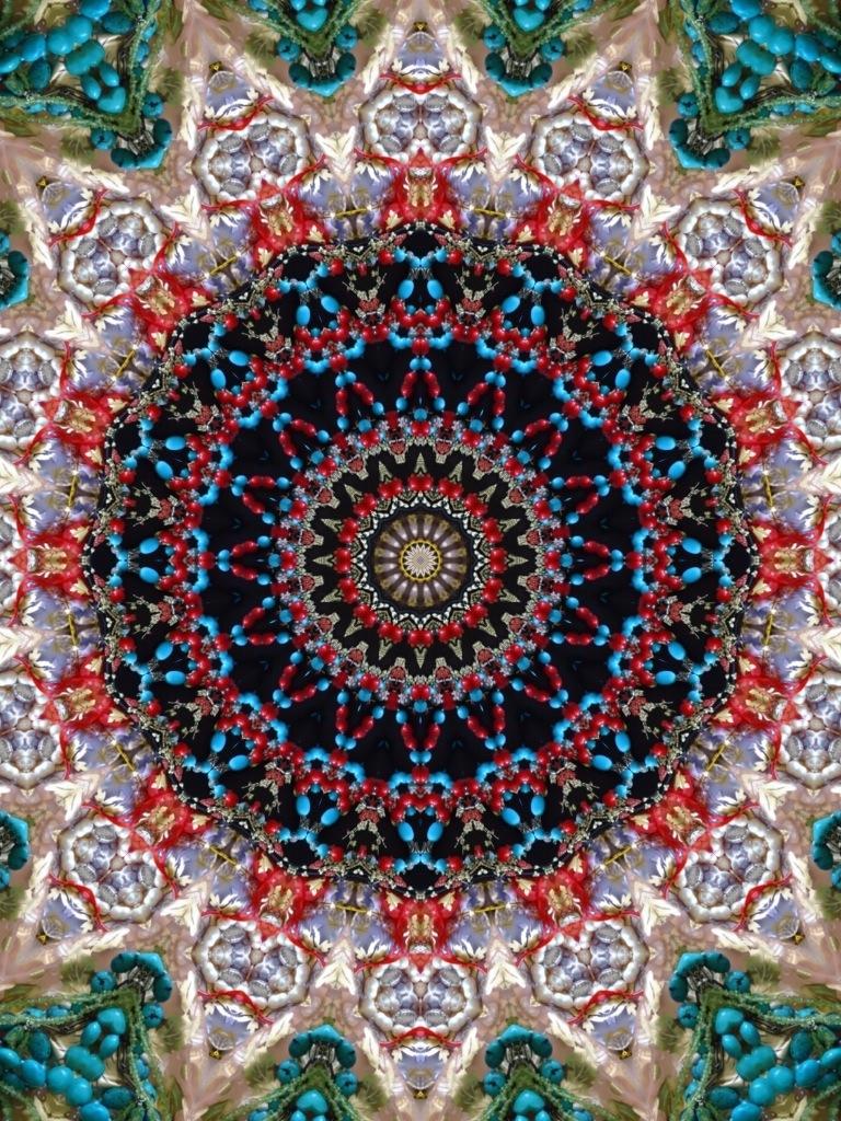 20120129-022140.jpg
