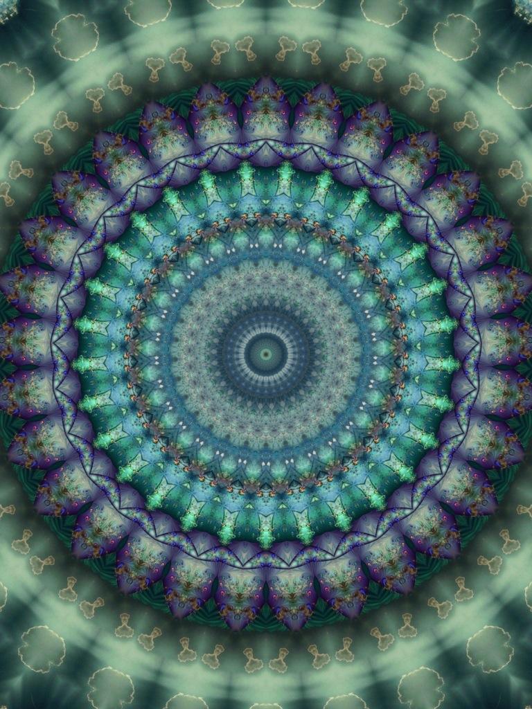 20121202-013441.jpg